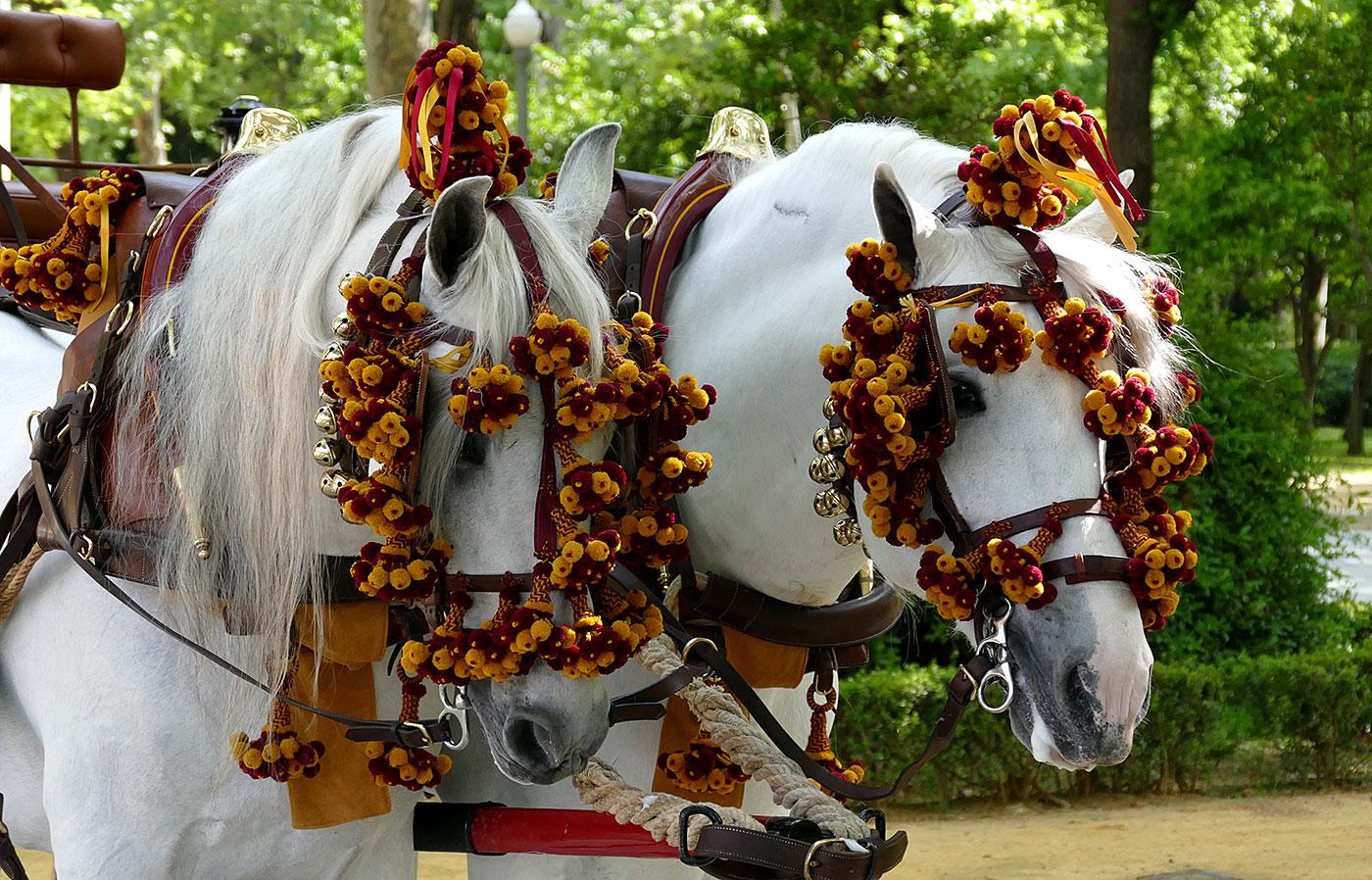 enganche caballos sevilla