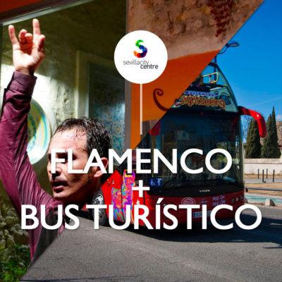 flamenco bus turistico