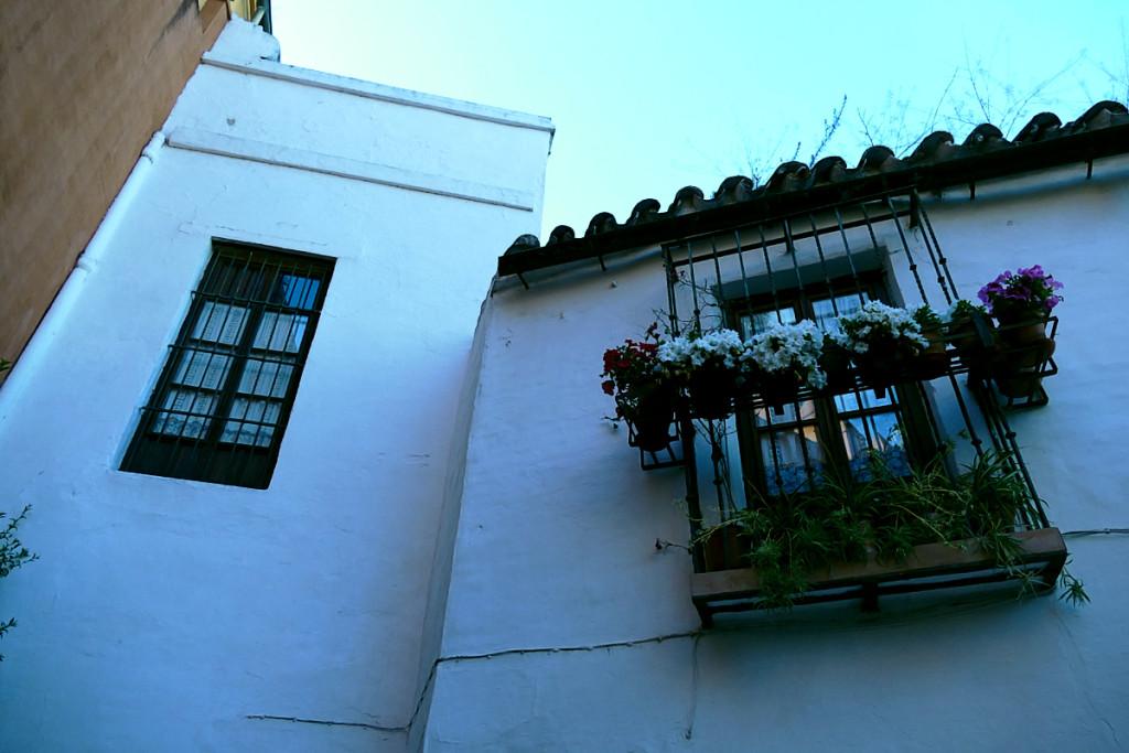 callejon juderia barrio santa cruz sevilla