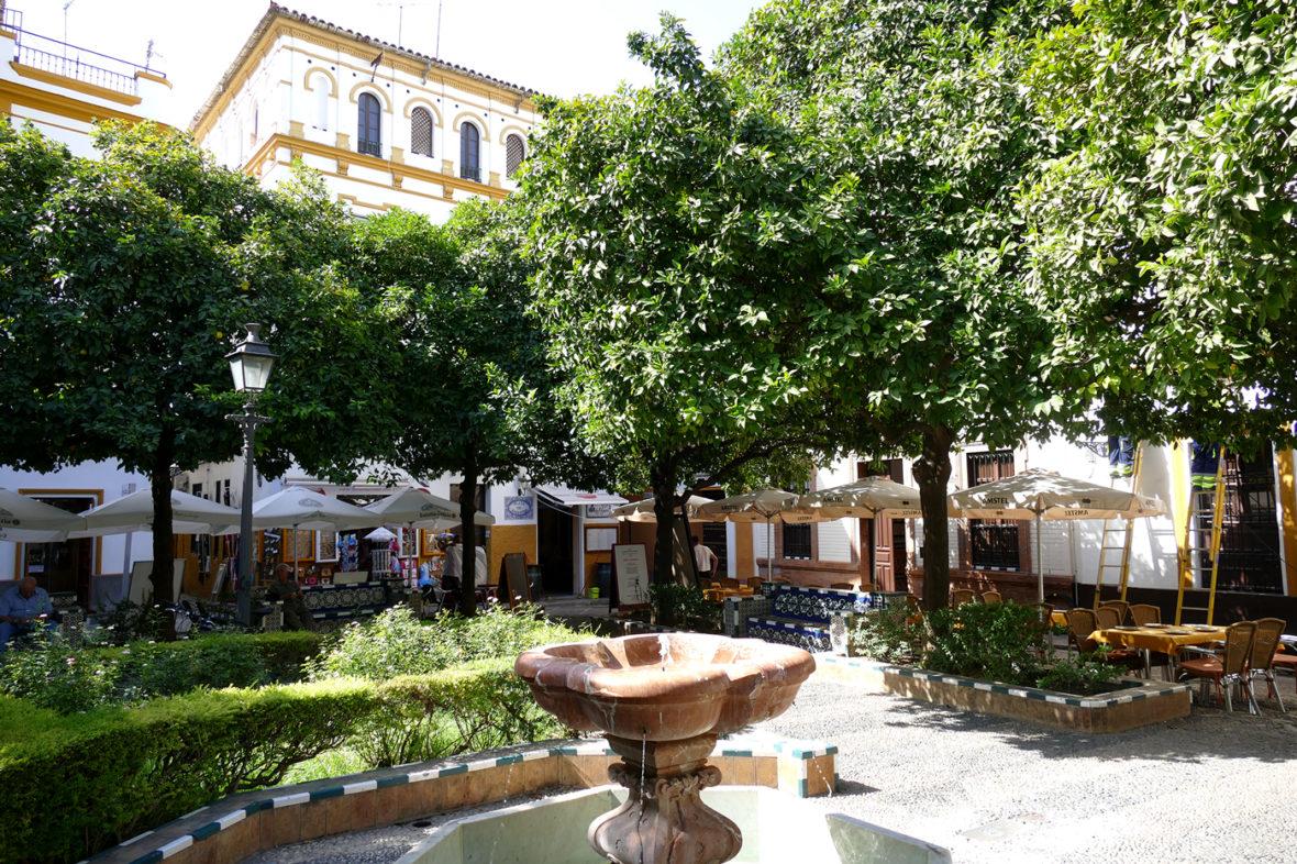 plaza dona elvira barrio santa cruz sevilla