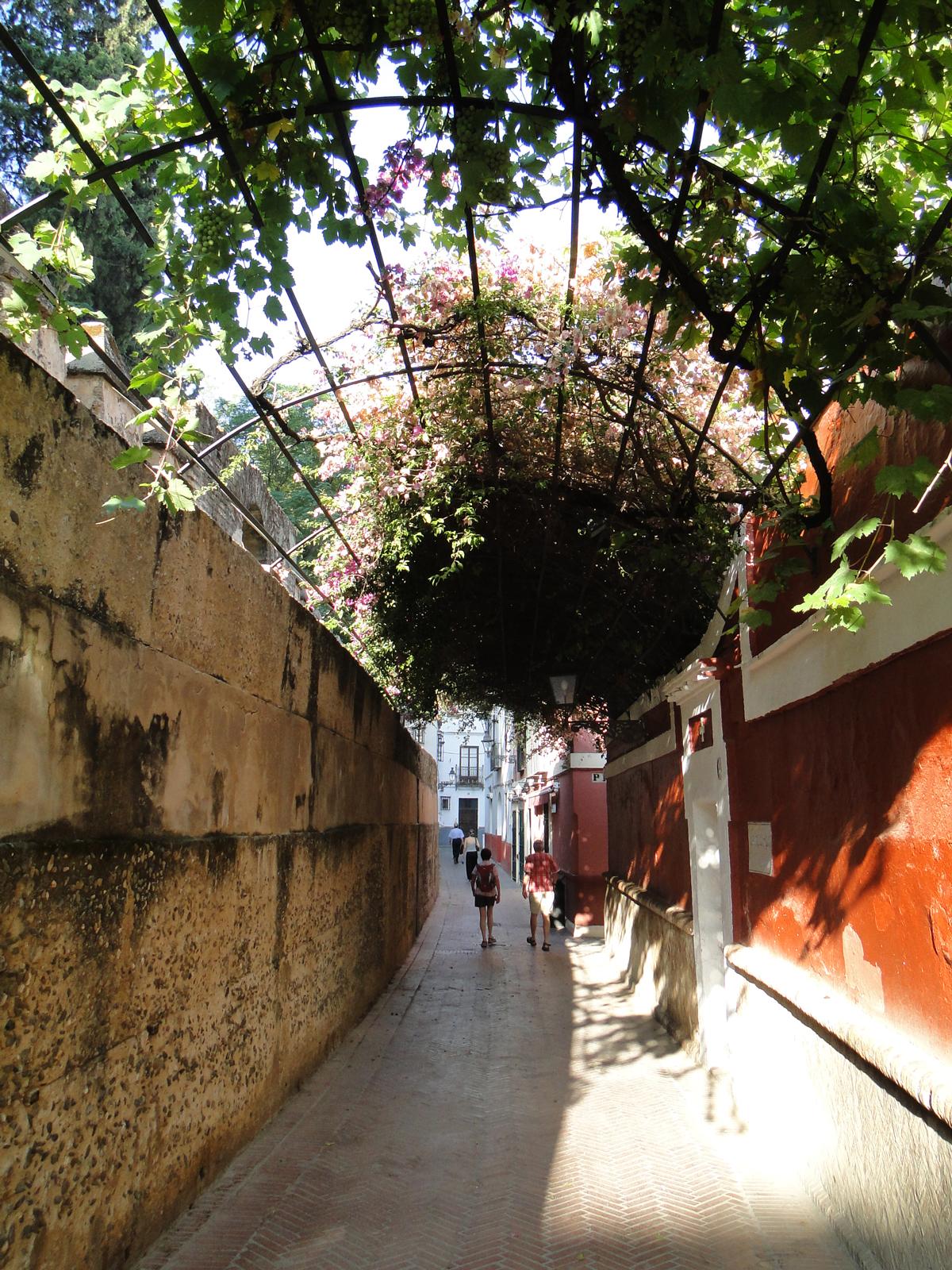 La muralla del Real Alcázar en la Calle del Agua