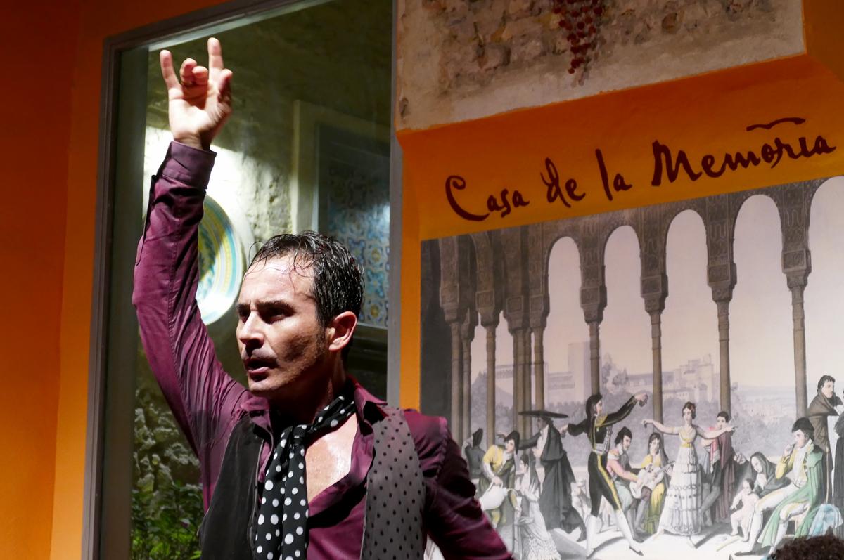 espectaculo flamenco casa memoria sevilla