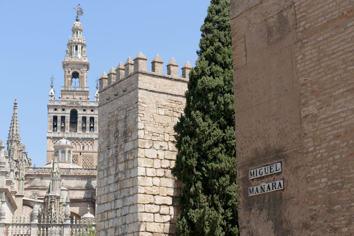giralda catedral alcazar sevilla